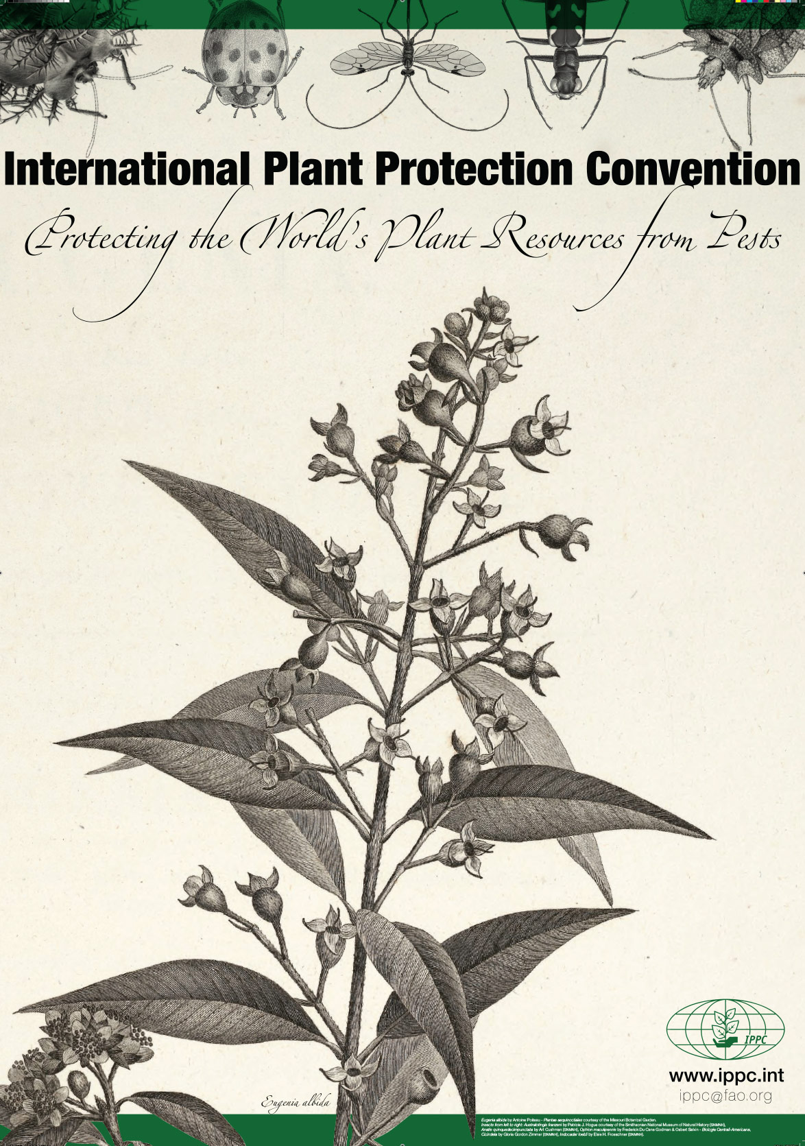A poster design for the International Plant Protection Convention.